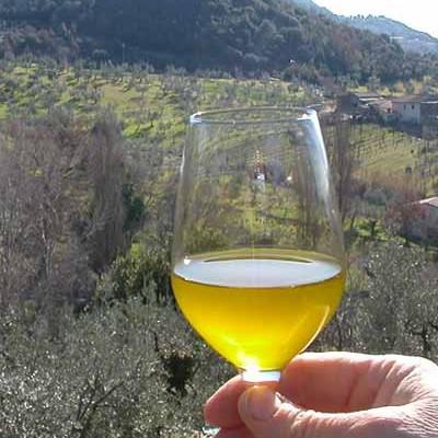 http://www.latorrettabandb.com/bb/wp-content/uploads/2015/12/olive-oil-tasting-and-tours-400x400.jpg